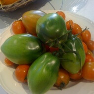 1000 things to do with green tomatoes before you die…