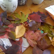Falling in love with and headlong into, autumn