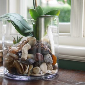 Things from nature can make beautiful indoor arrangements