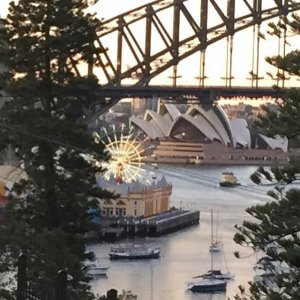 The view from Lavender Bay